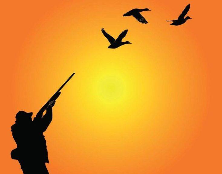 Nový zákon o poľovníctve